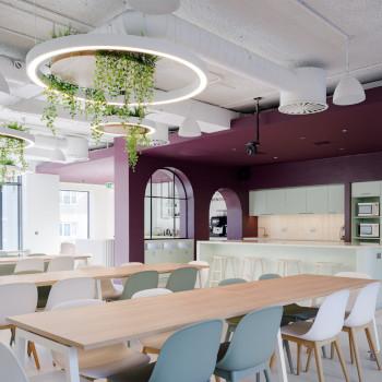 office acoustics with Sonaspray!